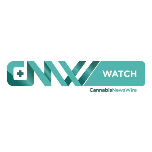 CannabisNewsWatch